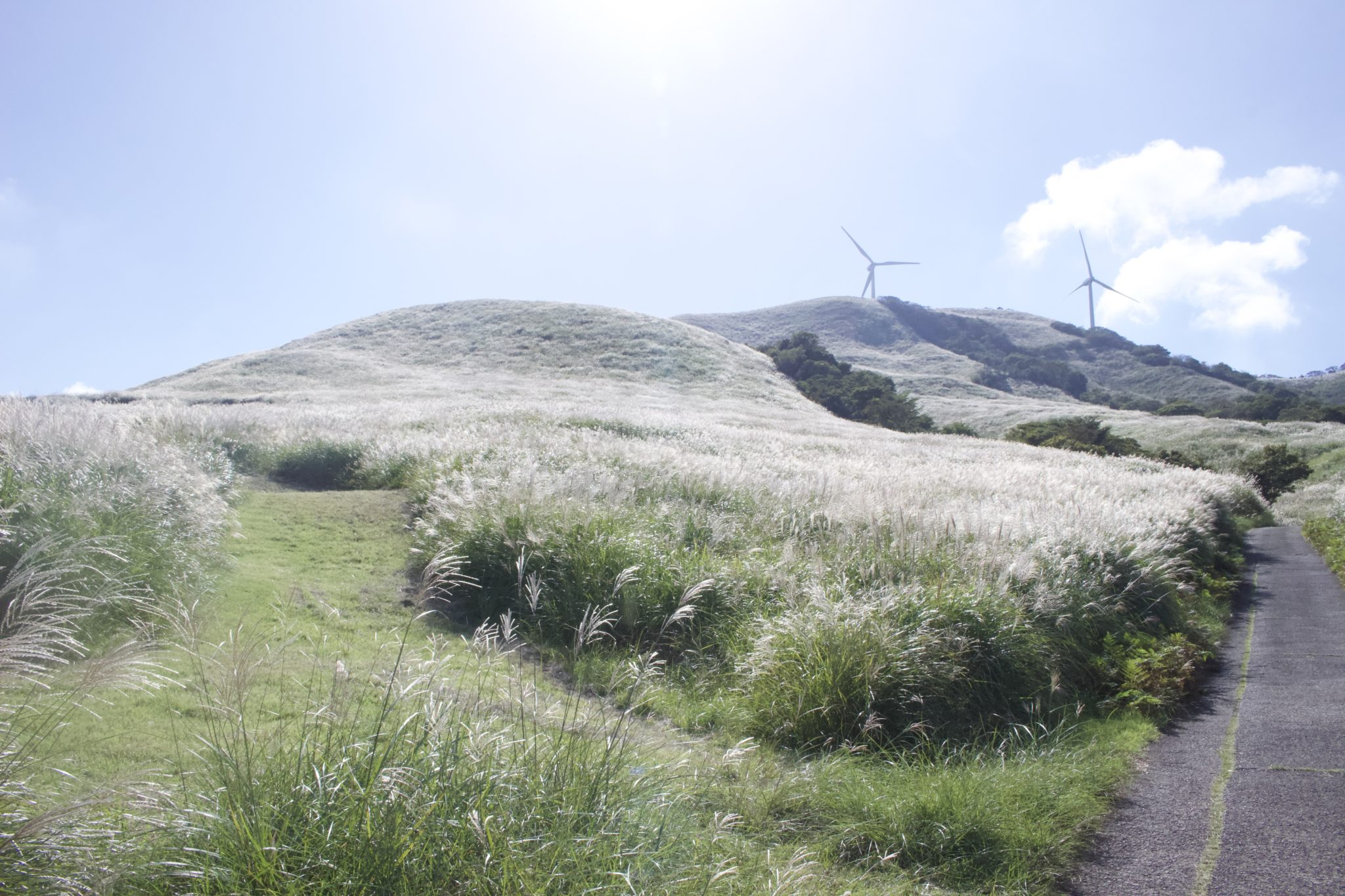 三筋山山頂の目印、風車を目指して